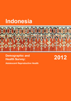 Cover of Indonesia Special, 2012 - Adolescent Reproductive Health Final Report (English)