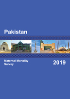 Cover of Pakistan Special, 2019 - Final Report (English)